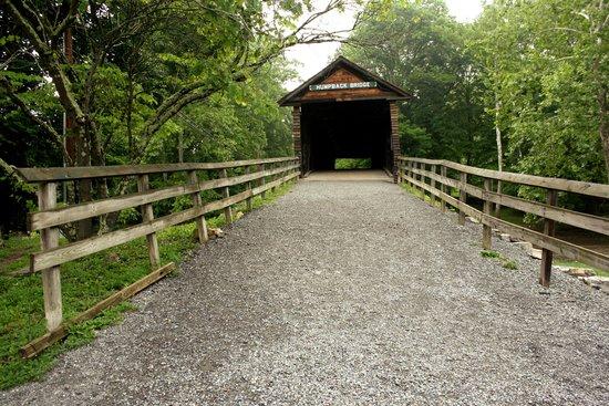 Humpback Bridge : Humpback