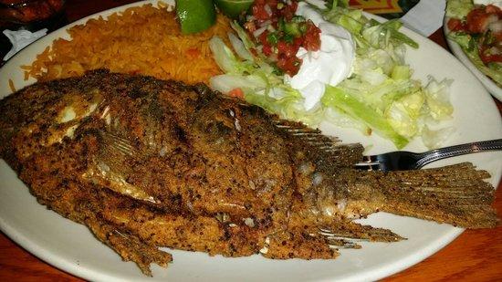 El Cazador Mexican Restaurant : delicious... definitely a must try....