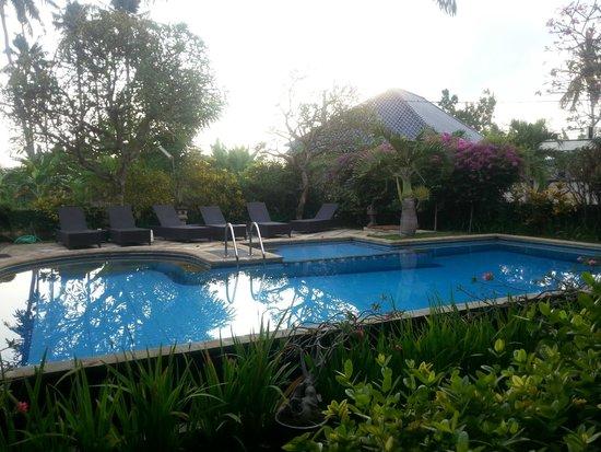 Villa Jaya : Poolside
