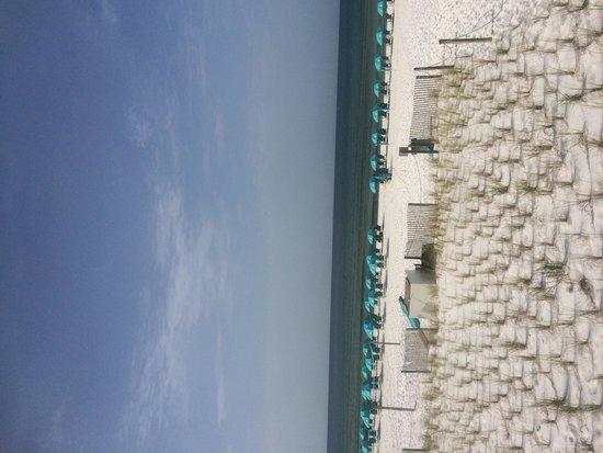 Best Western Ft. Walton Beachfront: Complimentary beach chairs