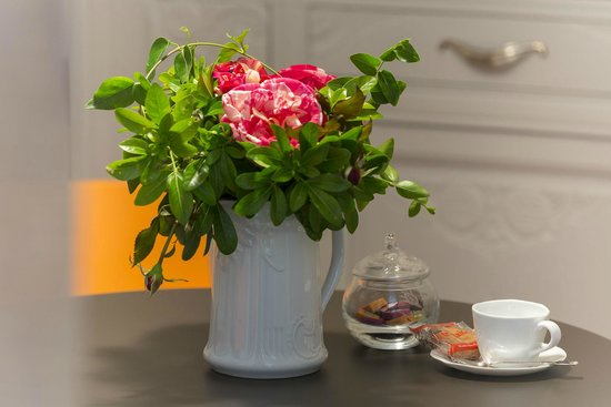 Le Clos du Mèn-Allèn : Les magnifiques roses de Brocéliande
