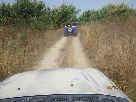 Jeep Safari Rhodes - Rhodes Adventures: getting through the brush on the way to the beach