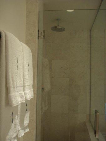 Kimpton EPIC Hotel: rain shower