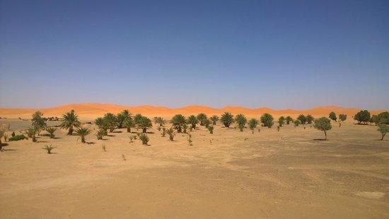 Dar El Janoub: Sicht von der Terrasse