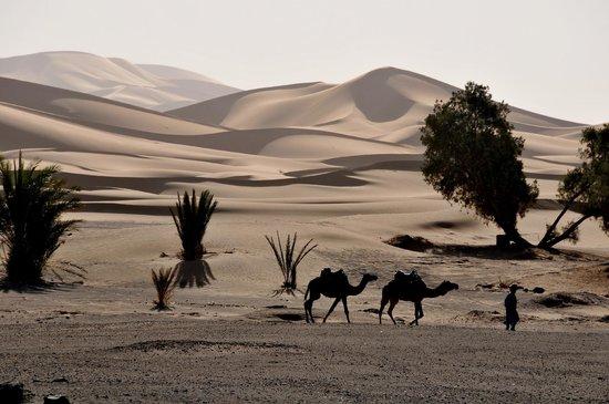 Wunderschöne Stimmung, Sicht vom Dar el Janoub