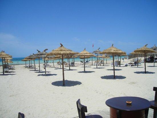 Green Palm: plaża hotelowa