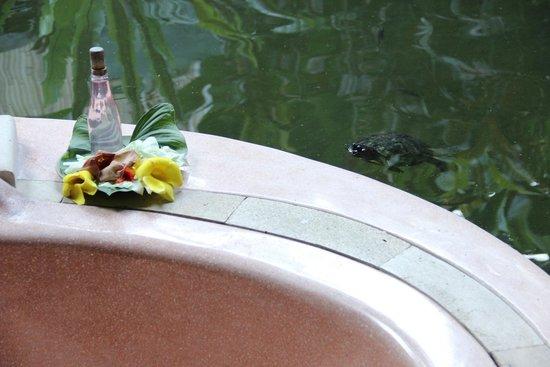 Villa Taman di Blayu : Salle de bain