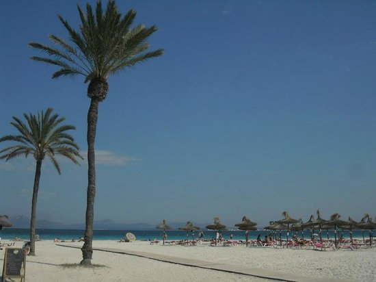 Club MAC Alcudia: Beautiful beach