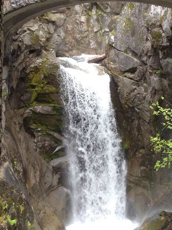 Mount Rainier : Melted snow makes for a beautiful waterfall!