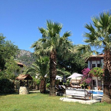 Murat Pasa Konagi: View from the backyard