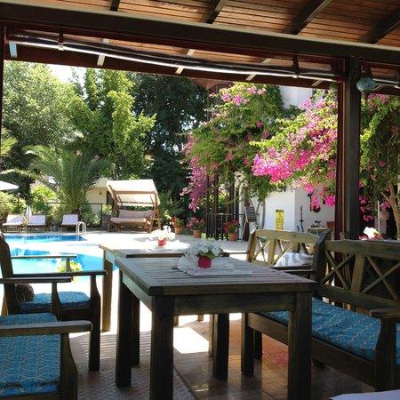 Murat Pasha Mansion: View from breakfast