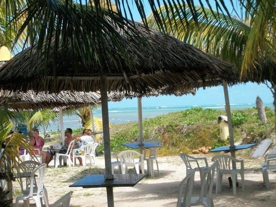 Piscinas Naturais Paripueira - Alagoas : paripueira