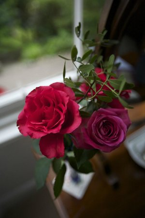 Northlands Bed and Breakfast: Fresh flowers