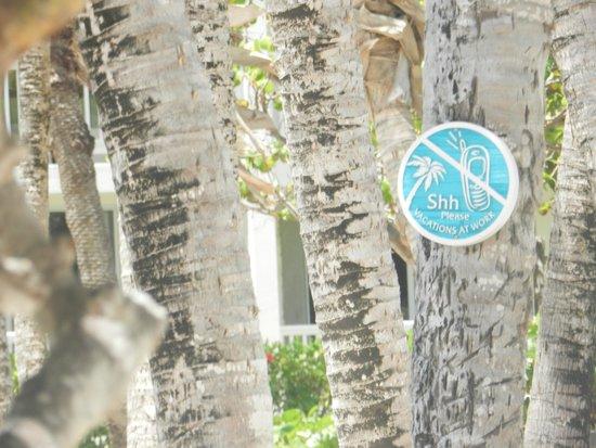 St. James's Club & Villas: Chutt, c'est tranquille sur cette plage