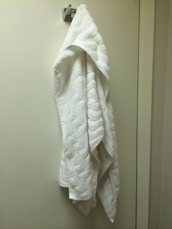 Motel 6 Knoxville: Used towel