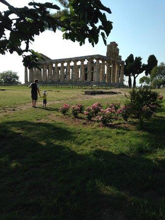 San Mauro Cilento, Italie : paestum scavi archeologici