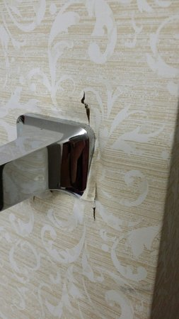 Comfort Inn On The Ocean : Toilet paper holder