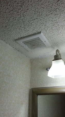 Comfort Inn On The Ocean: One- the bathroom ceiling is so low. It isn't a bathroom for a claustrophobic person. Two- dirty
