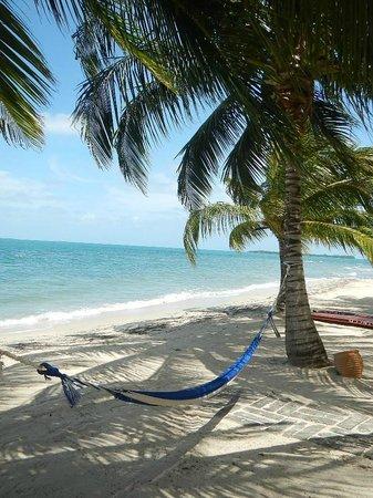 Turtle Inn: Cool caribbean breeze flow here