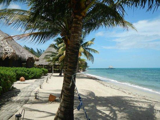 Turtle Inn: Beautiful white sand beach