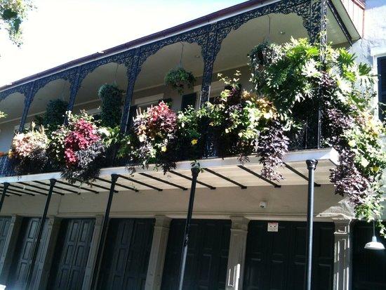 Omni Royal Orleans: Street scene