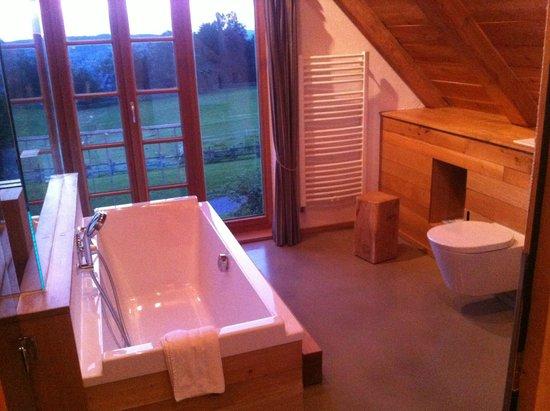 Bergdorf LiebesGruen : Bathroom upstairs with a view....