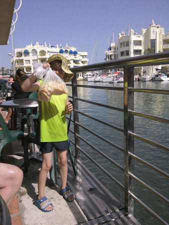 Benalmadena Puerto Marina : Feeding the fish with bread purchased from the marina