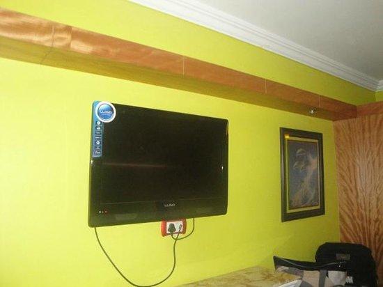 Hotel Sunpark Ooty: TV
