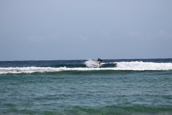 Villa Tropical Oceanfront Apartments on Shacks Beach: Jobos