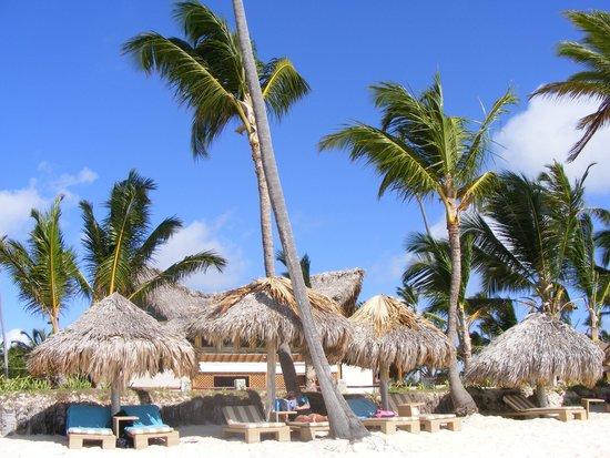 VIK Hotel Arena Blanca: beach bar