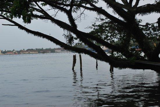 Vivanta by Taj - Malabar: pearl island