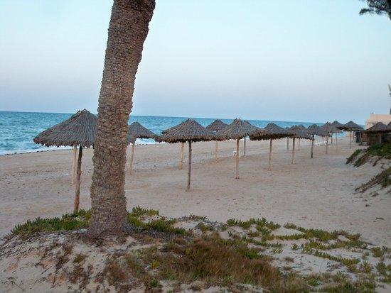 Zita Beach Resort: strand