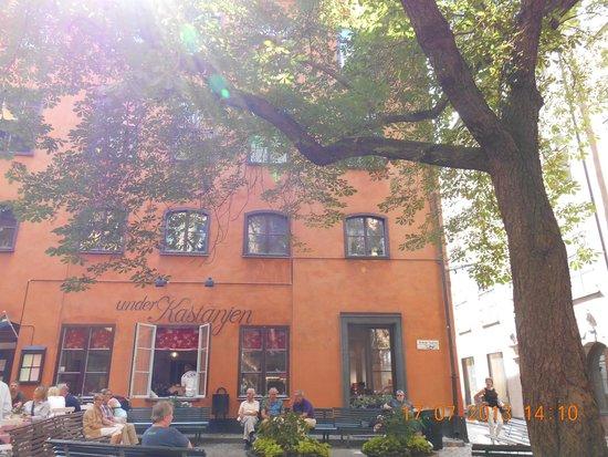 Castanea Old Town Hostel: place au pied de l'auberge