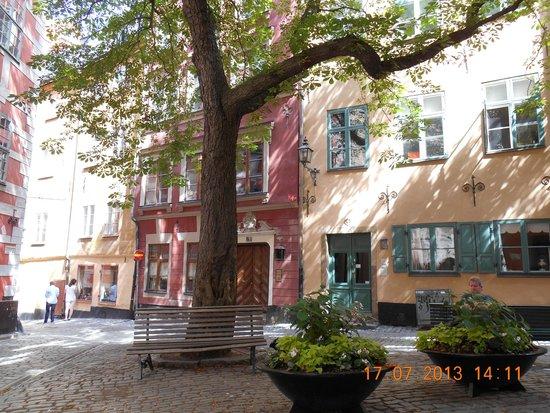 Castanea Old Town Hostel: Petite place au pied de l'auberge