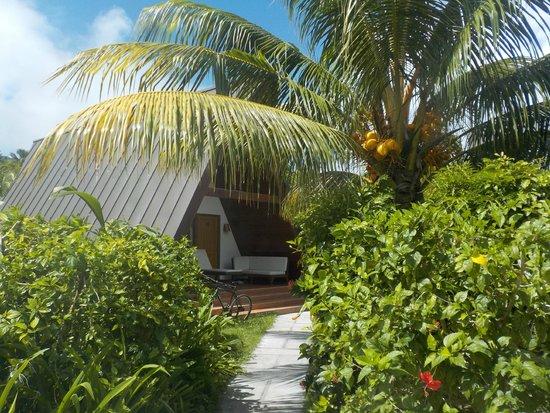 La Digue Island Lodge : le chalet