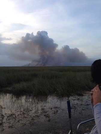 Mack's Fish Camp - Tours: Everglades fire