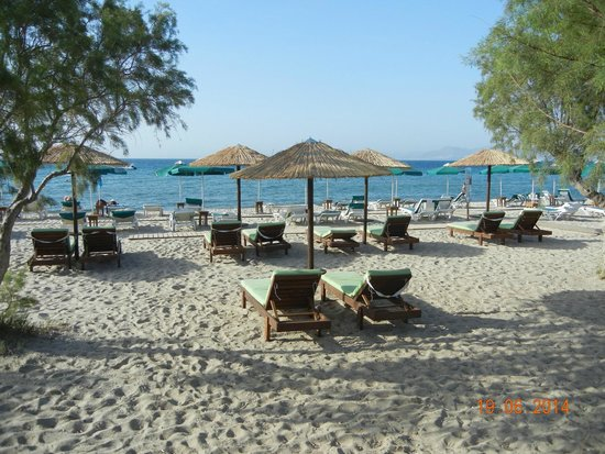 Akti Dimis Hotel: The Beach at Akti Dimis