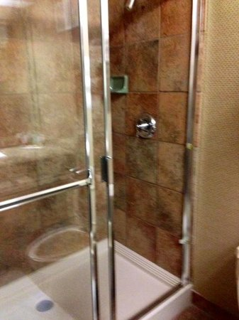 Luxor Hotel & Casino: Bathroom - standing shower only (no tub)