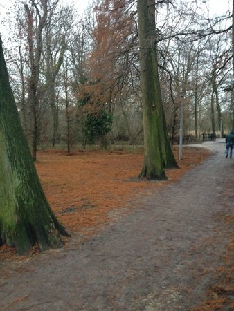 Oud Zuid: Vondelpark