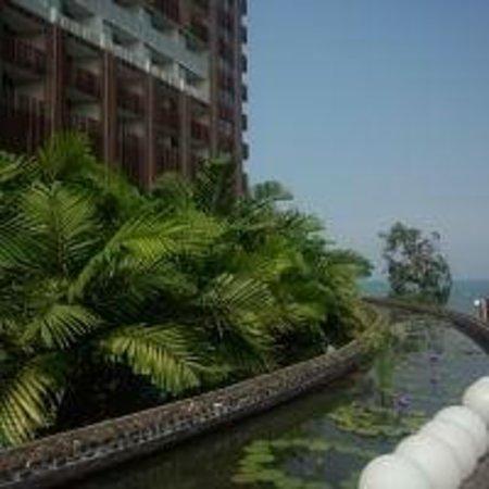 Hilton Pattaya: 庭