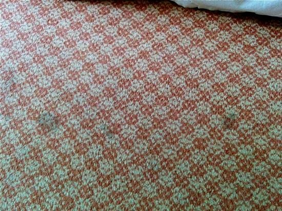 Hotel PUR Quebec : stained carpet
