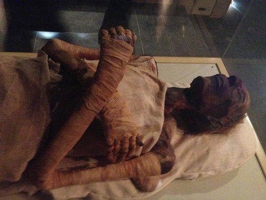 Le Vieux Caire (Quartier copte) : Sala de Múmias - Museu do Egito