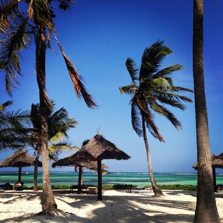 Dongwe Club : La spiaggia