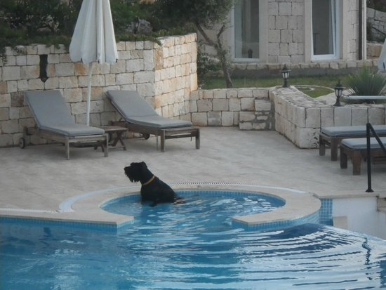 Deniz Feneri Lighthouse: The pool