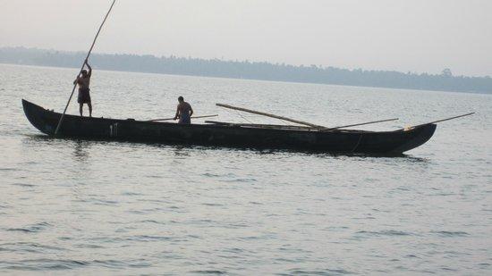 Club Mahindra Ashtamudi: Fishermen collecting their days catch