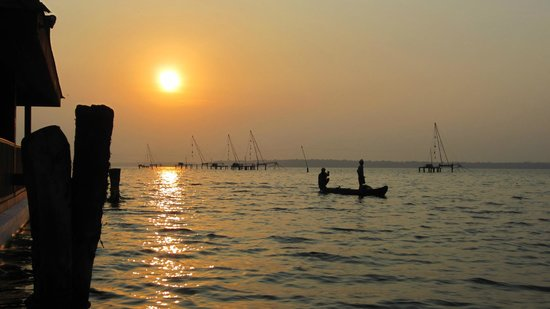 Club Mahindra Ashtamudi: Fisherman collecting their catch early in the morning