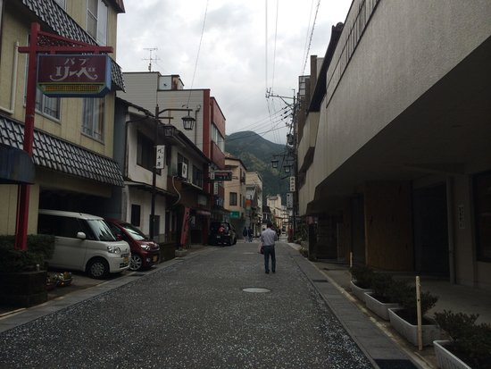 Hidasanso: 温泉寺の参道、温泉街を通って合掌村まで行けます。