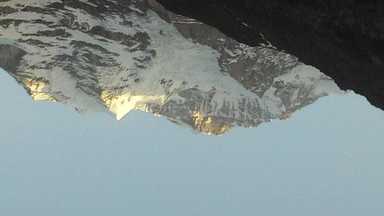 Hotel Belvedere: Jungfrau