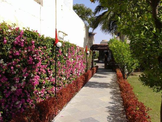 Beautiful floral walkways at Shikarbadi