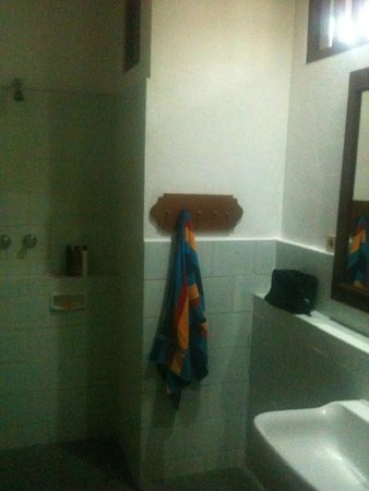 Rini Hotel: spacious wet room